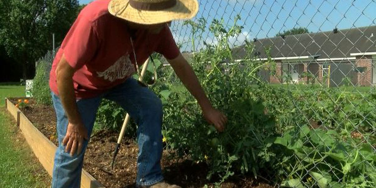 SWLA residents growing a garden to provide love and care to those in need