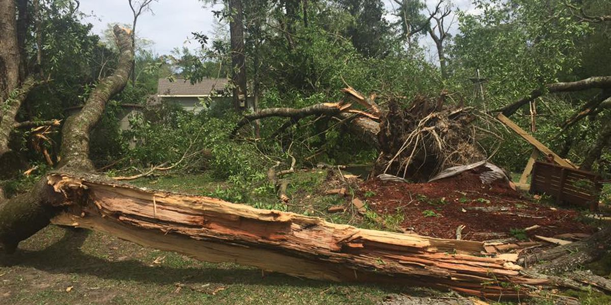 Moss Bluff storm damage