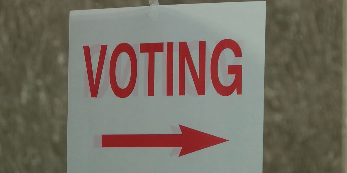 AUG. 15 ELECTION: Here's what's on the ballot