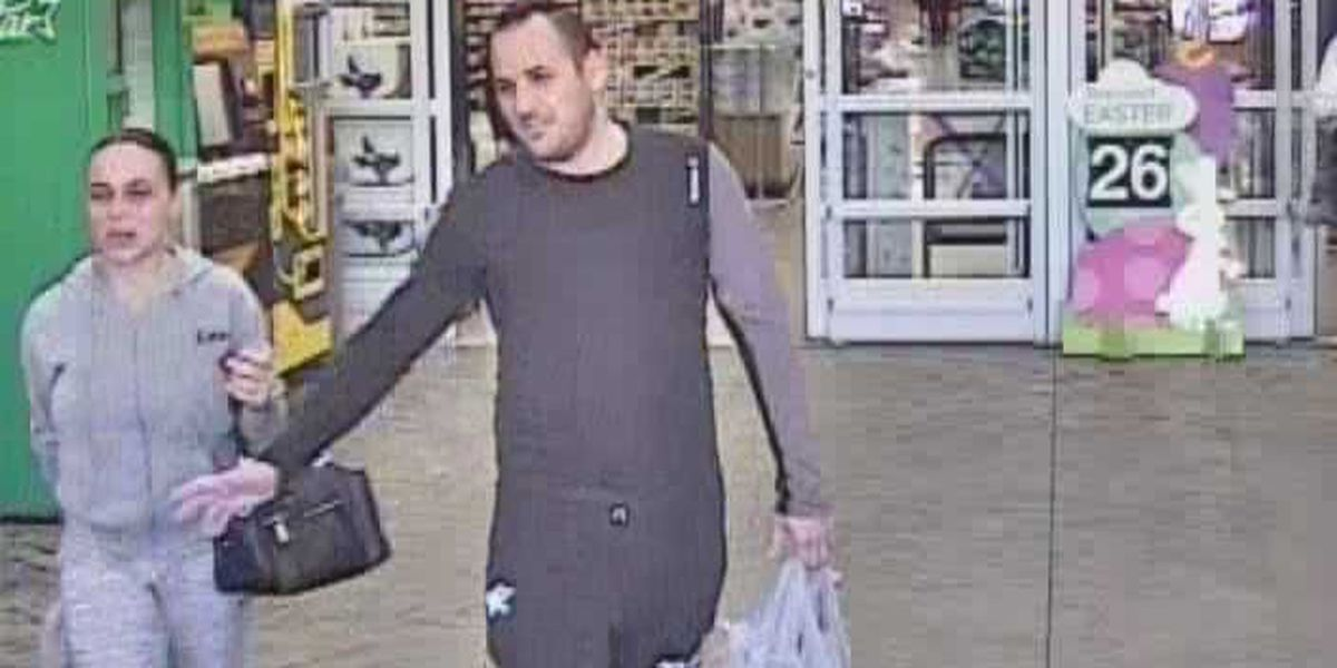CPSO searching for suspects believed to have stolen credit card information
