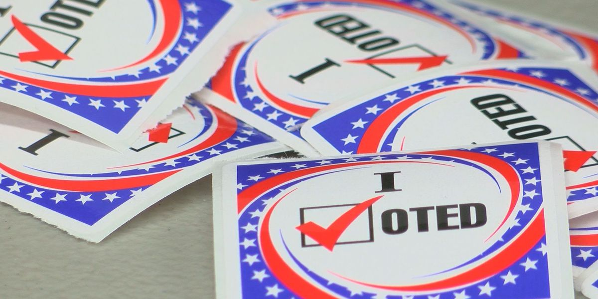 What's on Beauregard's ballot: Nov. 16 election