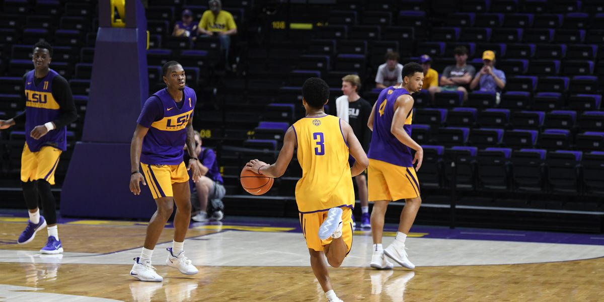 LSU head coach Will Wade says 'expectations are high'