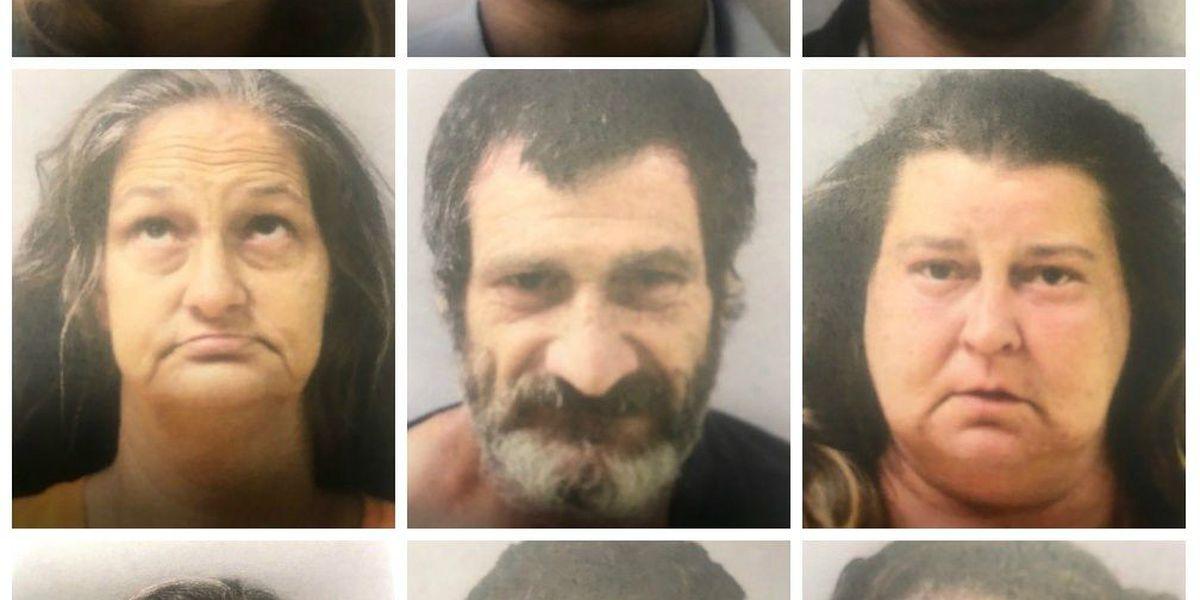 11 arrests made in Sulphur drug operation 'Polar Pop'