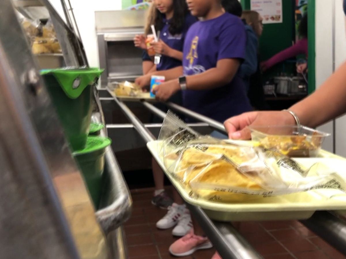 Some school systems to begin meals again with different distribution