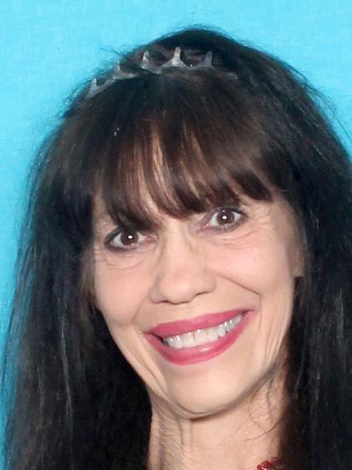 CPSO Dive Team recovers body of woman who jumped off 210 bridge