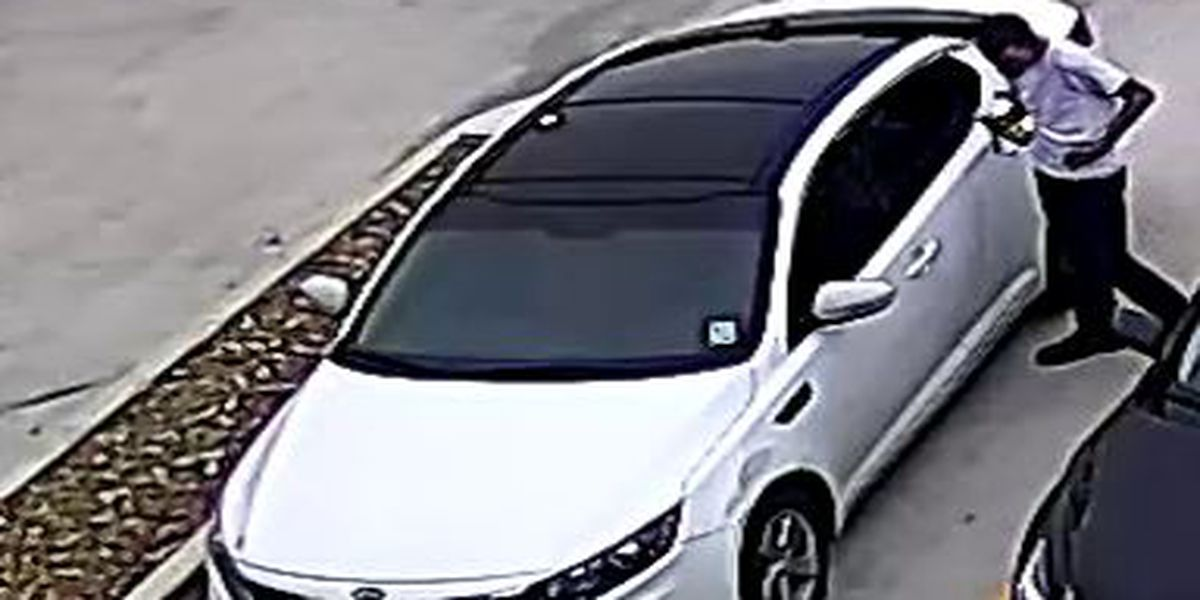 Police seek information on auto theft from hotel
