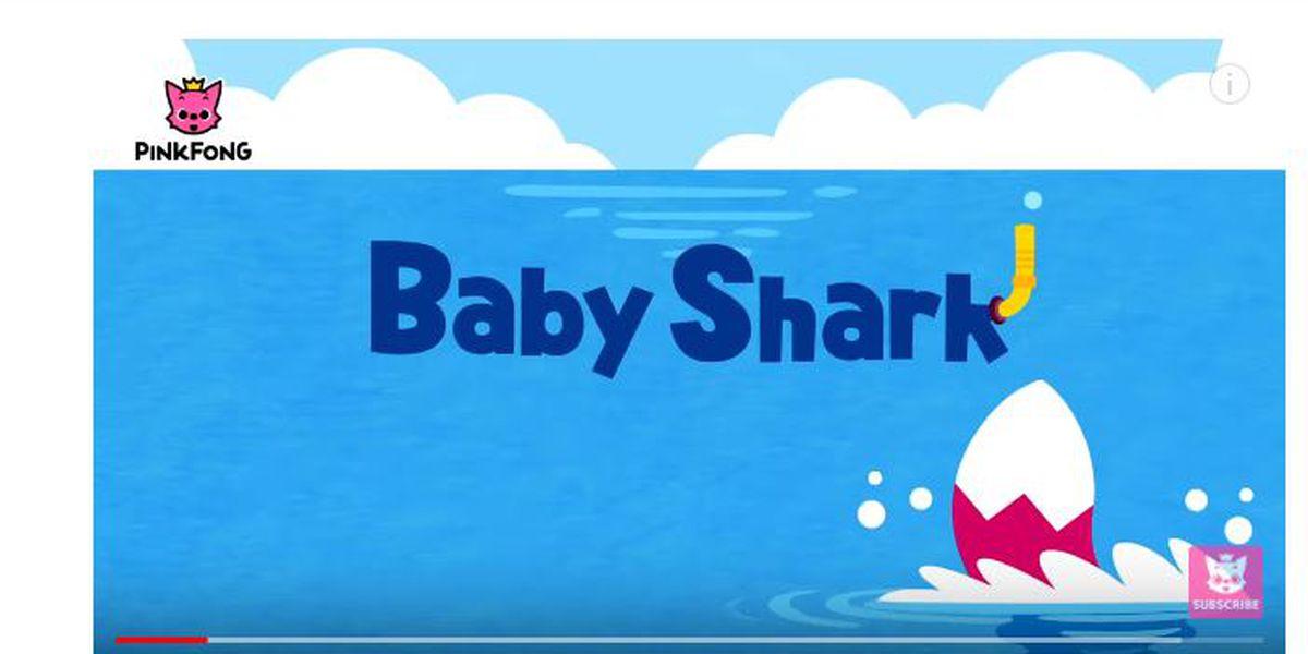 Hey parents, 'Baby Shark' is coming to Netflix, 'Doo Doo Doo Doo Doo Doo'