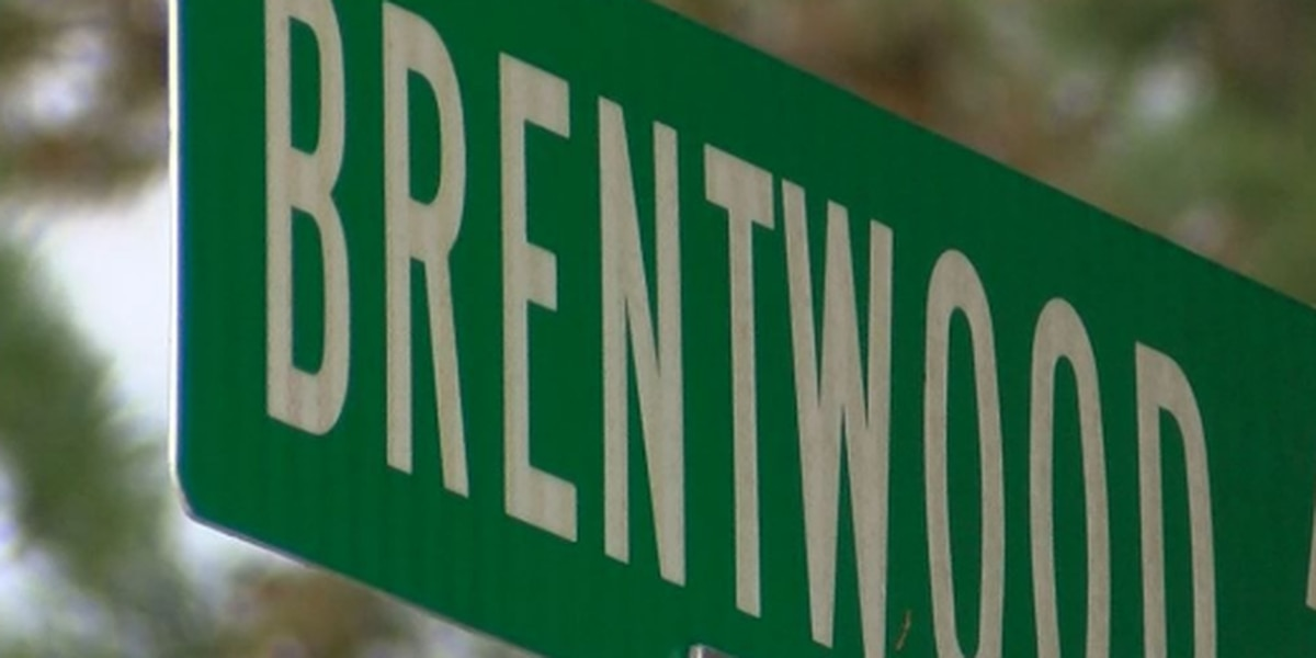 24-year-old man killed near Brentwood Avenue