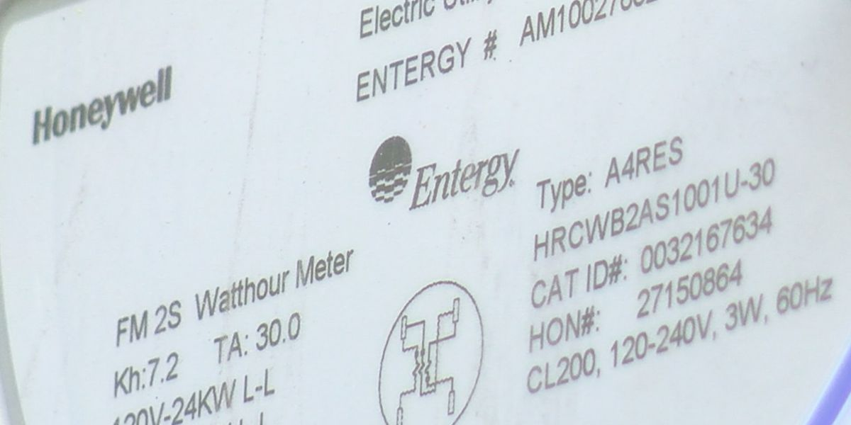 Entergy disputes rumored rate increase by Louisiana Energy Users Group