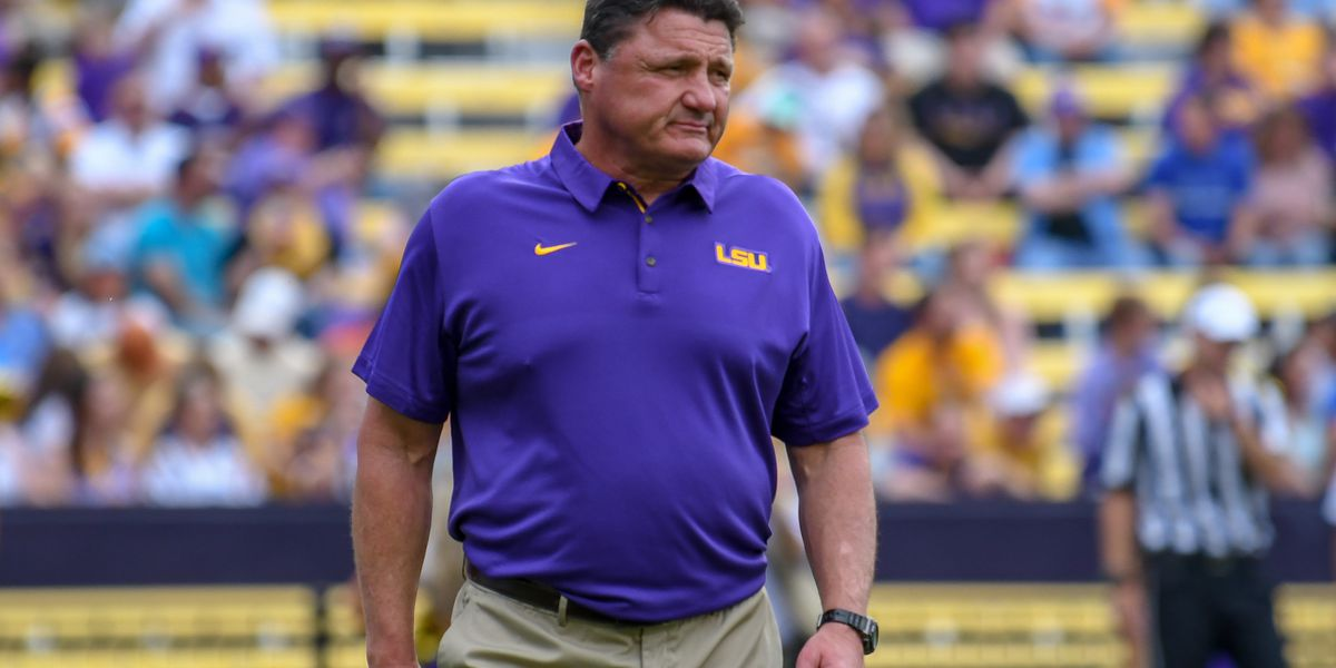 LSU closes out recruiting class with OLB/DE Desmond Little