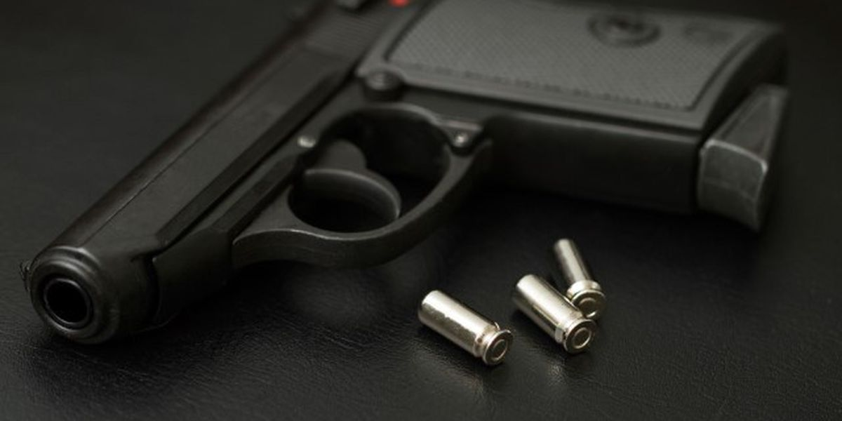Gun confiscated from 15-year-old student at summer school