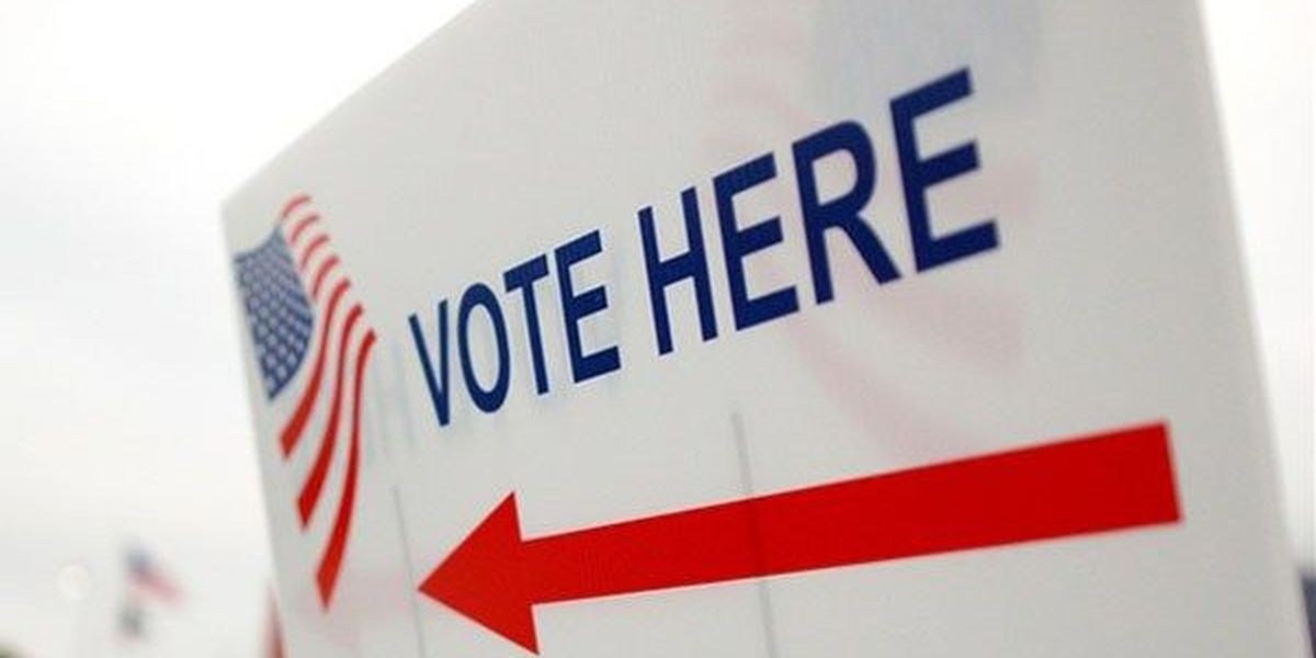 Dec. 8 election: Beauregard, Cameron, and Vernon ballots