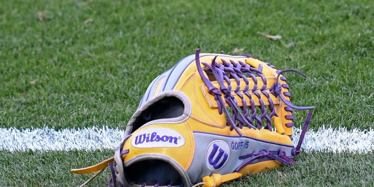 No. 7 LSU softball capitalizes on mistakes for 2-1 win over Michigan