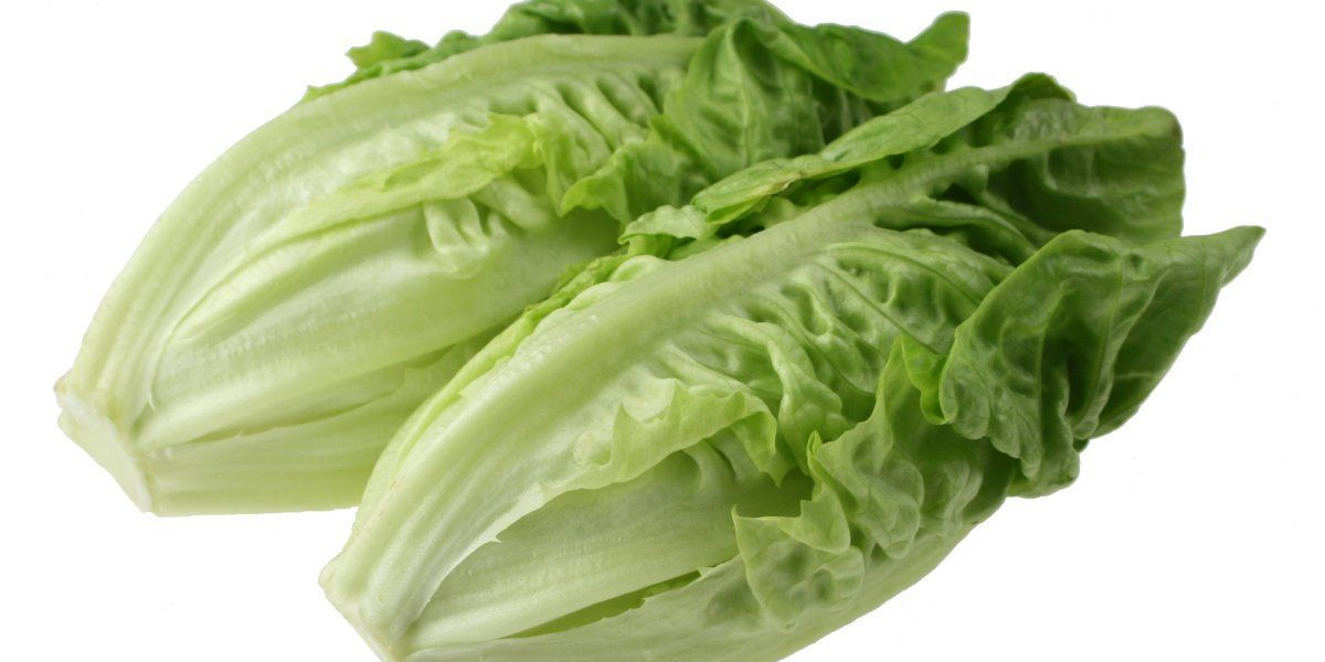 CDC: Outbreak of E.coli infections linked to romaine lettuce