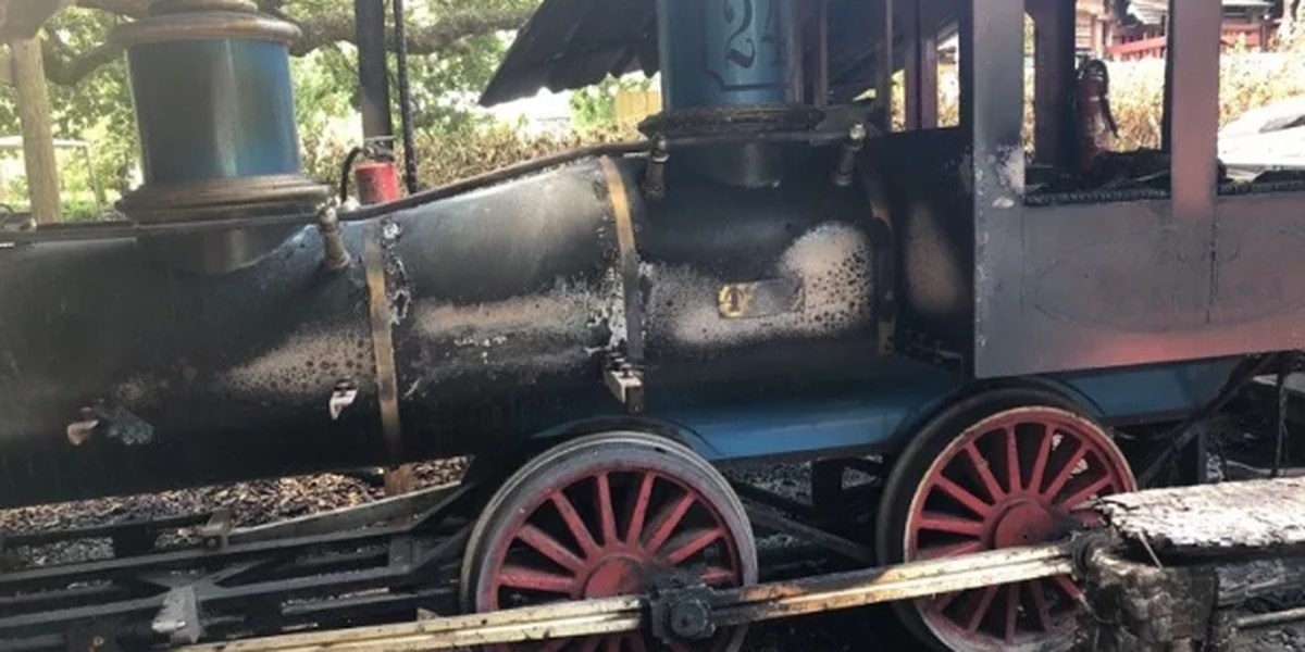Zoosiana reopens after Saturday fire