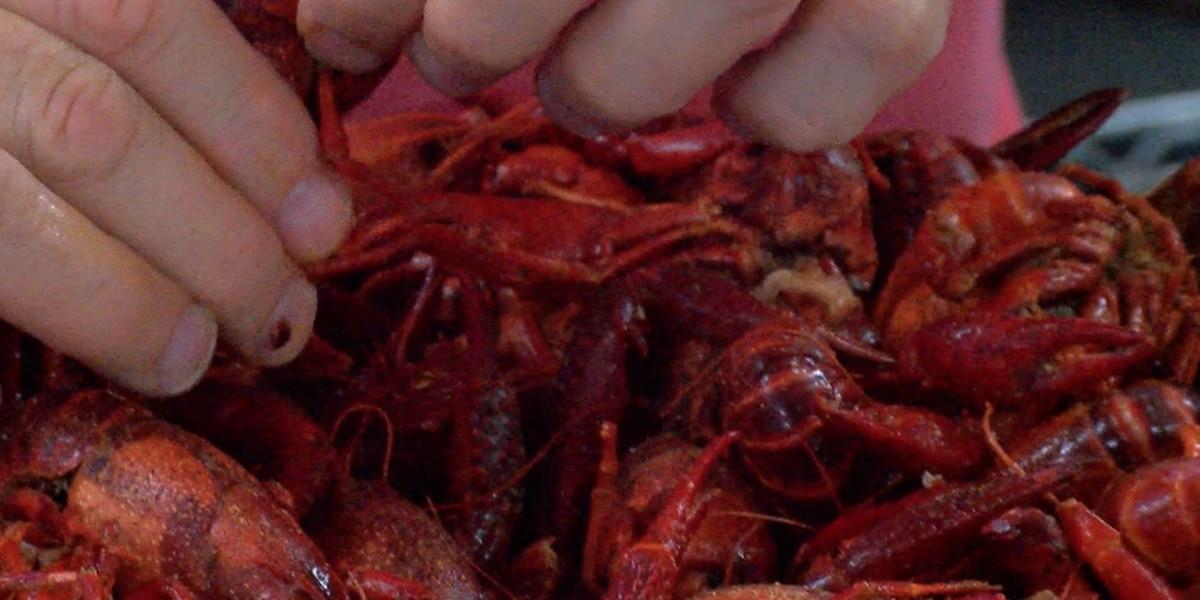 Early crawfish season for some Lake Area restaurants
