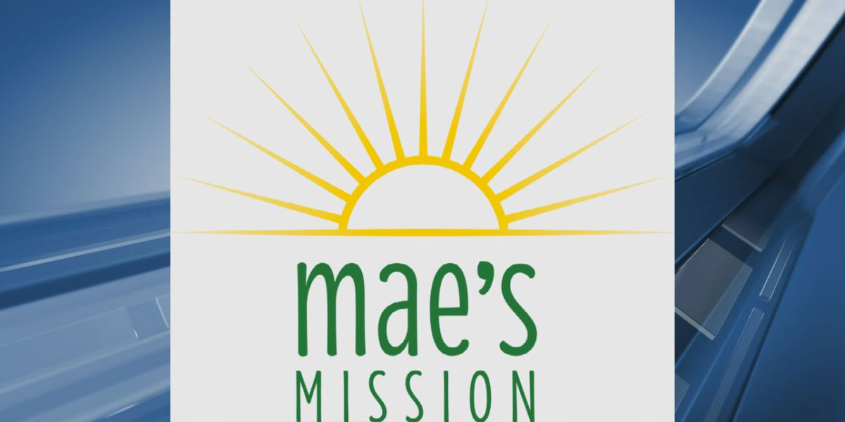 Mae's Mission offering grant for nonprofit organizations