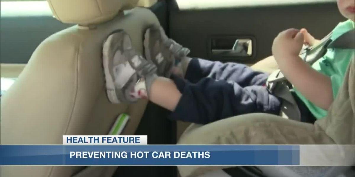 State police work to prevent hot car deaths in Louisiana