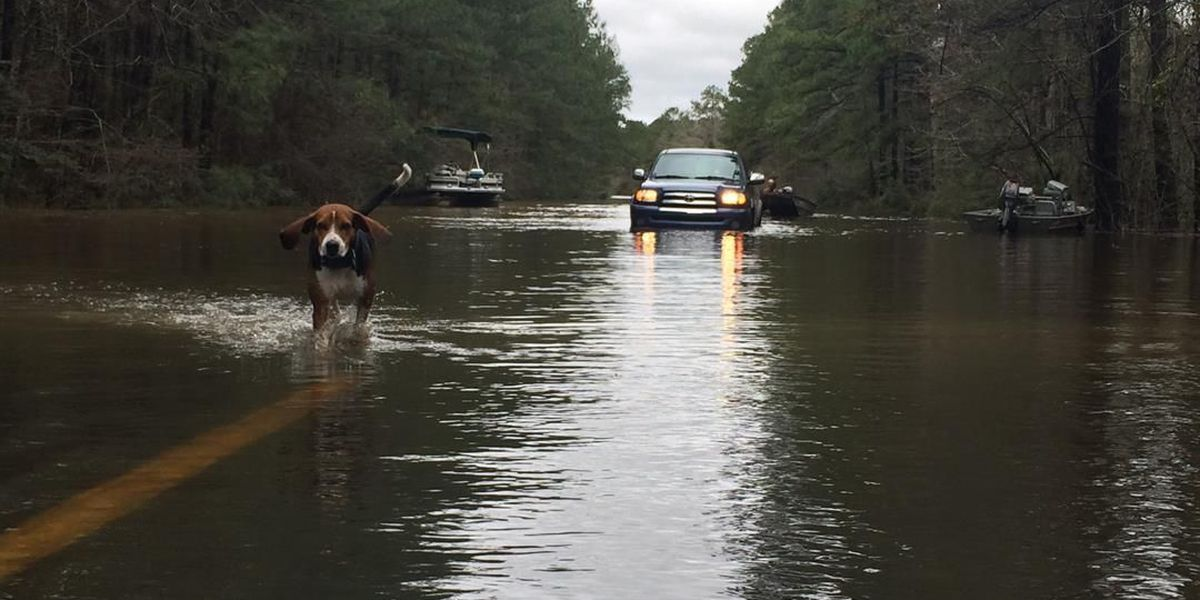 Want to help? Here's how you can donate to help flood victims