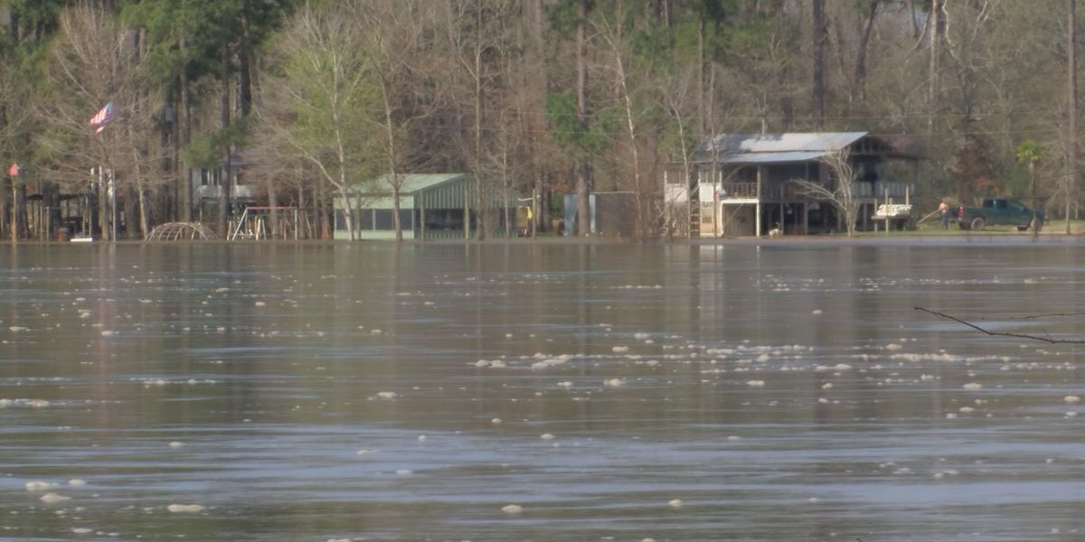 Louisiana woman starts petition to implement national flood control regulations