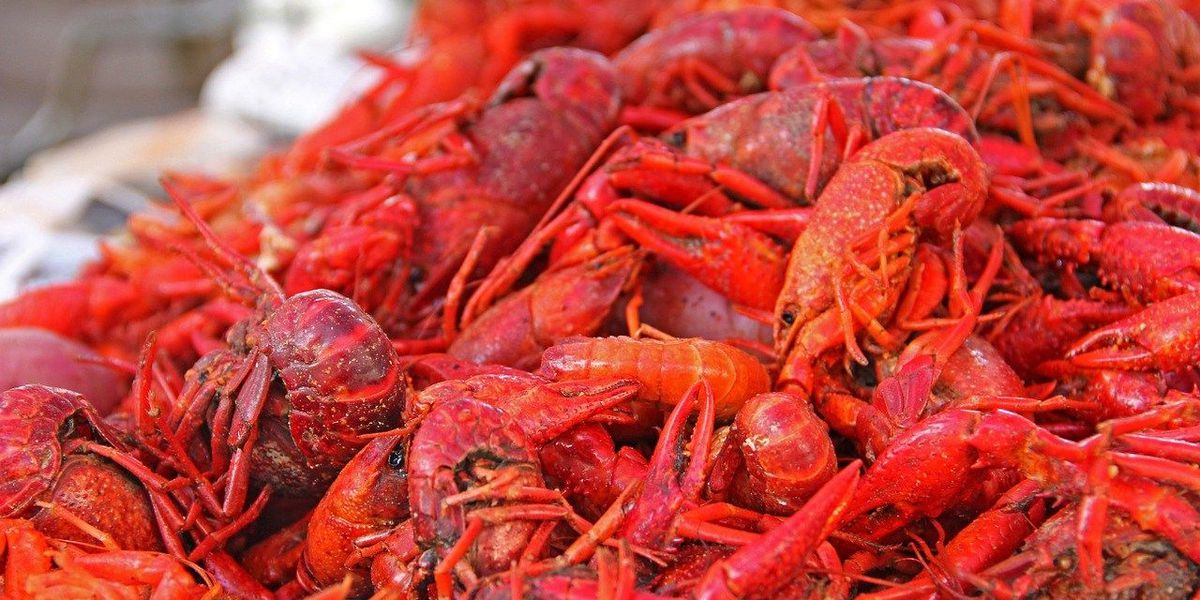 You ready for some Crawfish?
