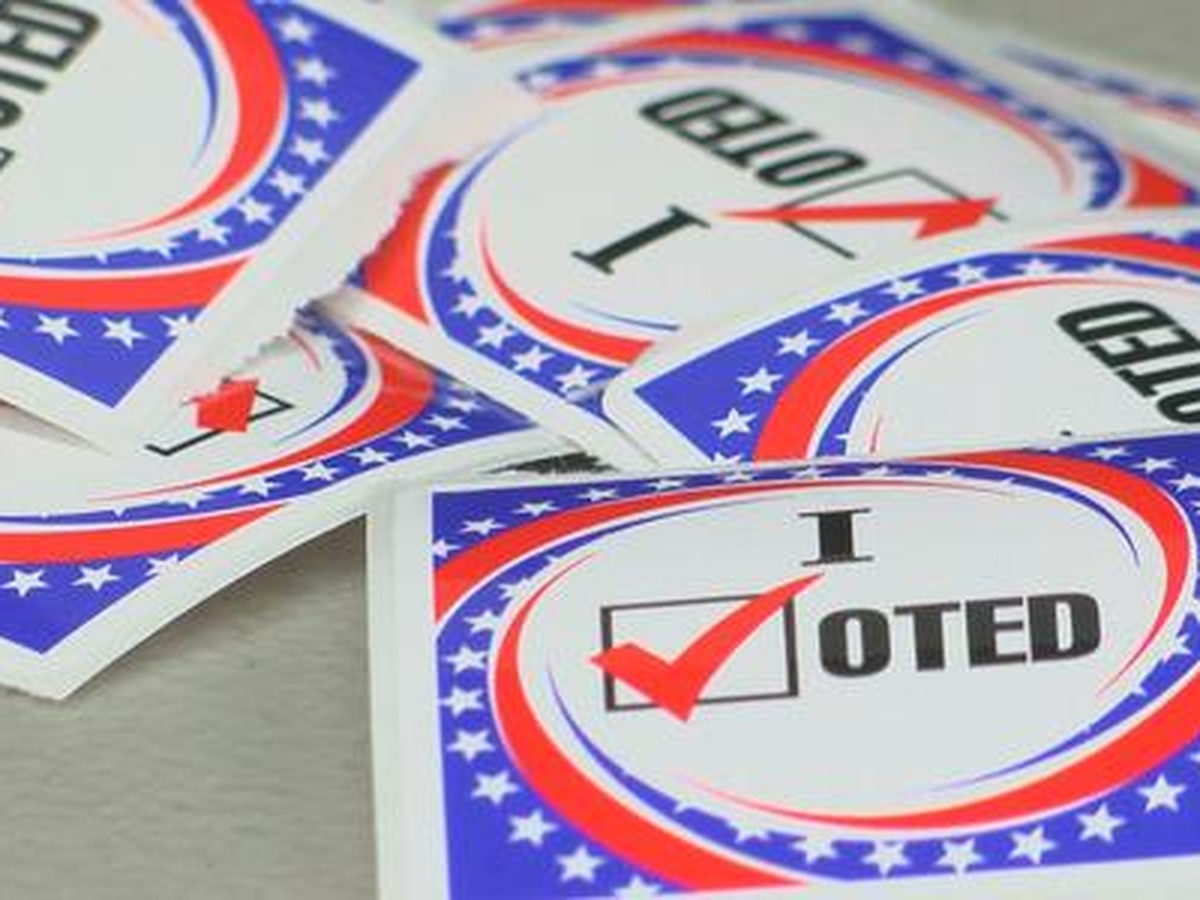 Calcasieu Parish qualifying candidates for Nov. 3 ballot