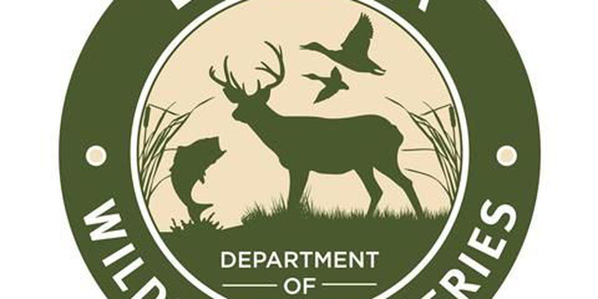 Seven Louisiana schools receive archery equipment from LDWF