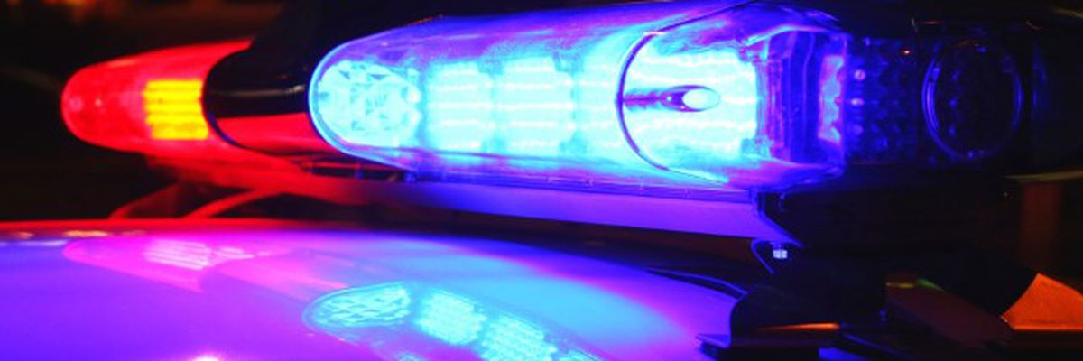 Skeletal remains found near Toledo Bend