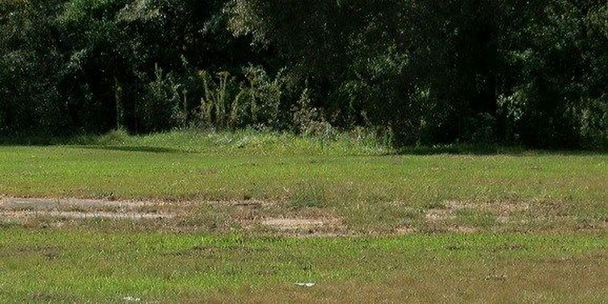 Properties to be auctioned in effort to revitalize North Lake Charles