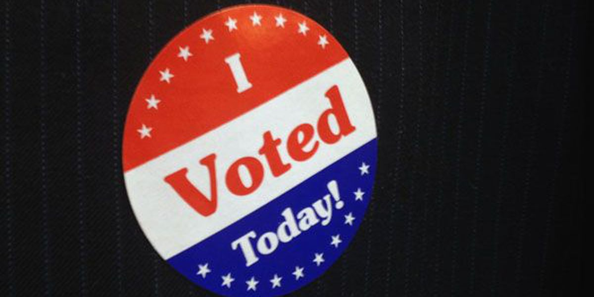 Allen Parish ballot for the Nov. 21 election