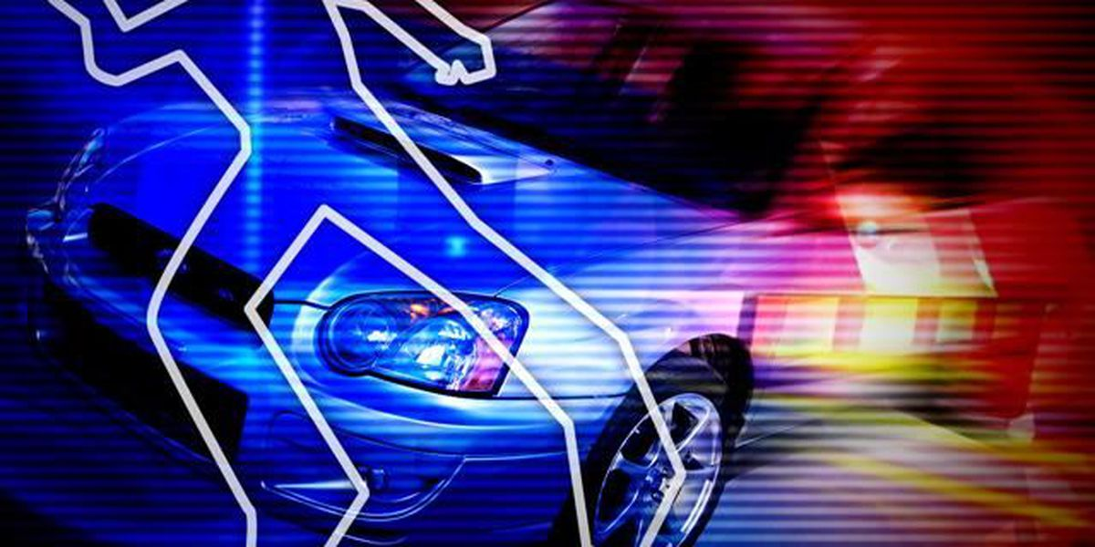 Lafayette Police investigating fatal accident involving pedestrian