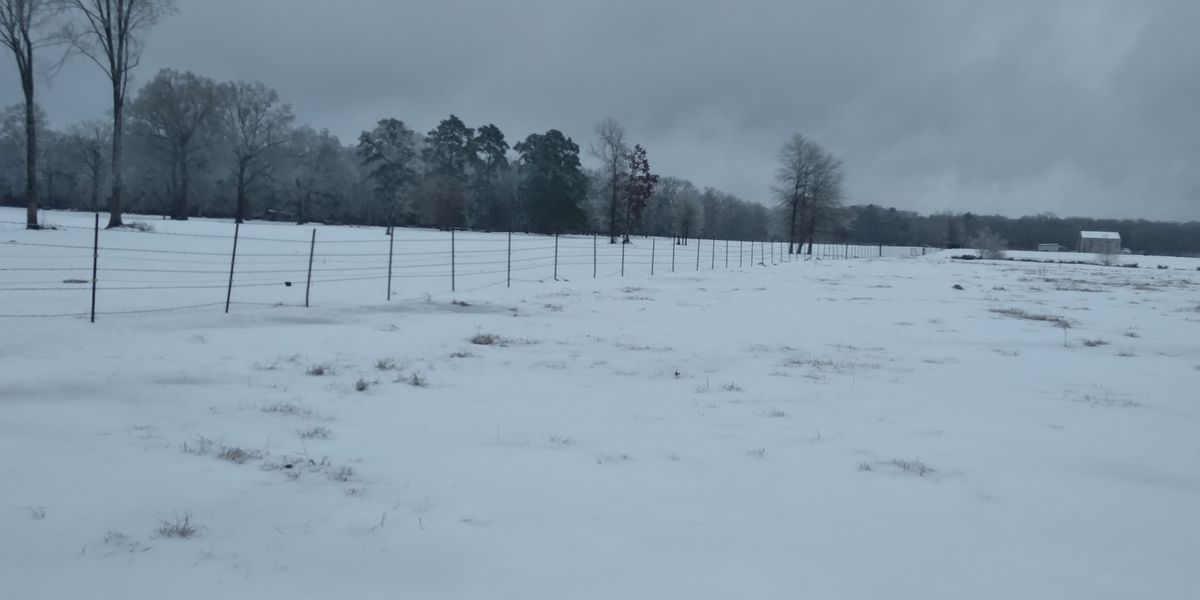 La. state offices closed in 7 parishes as effects of winter storm still being felt