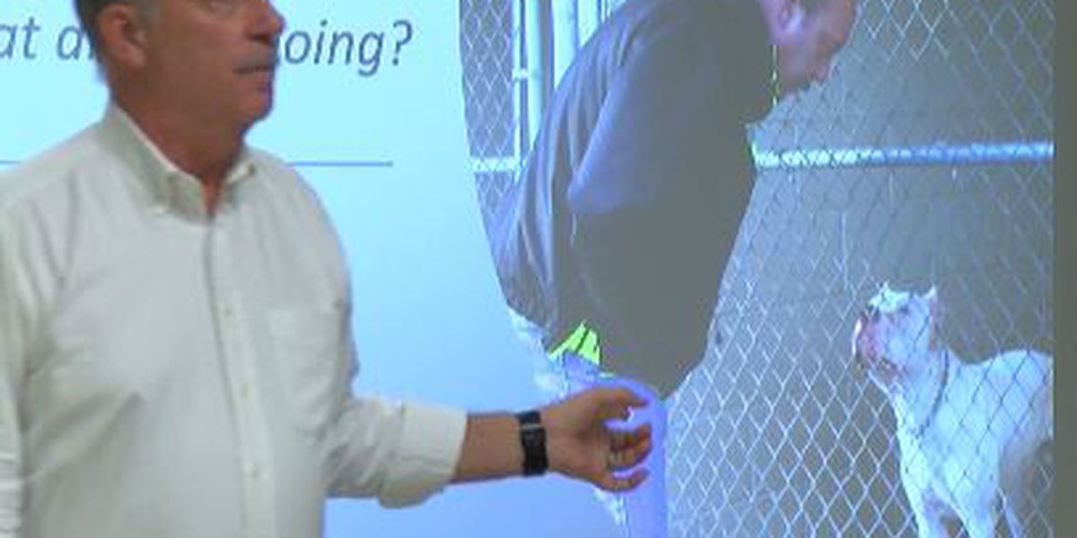 Beauregard Deputies receive special training to handle dogs with non-lethal force