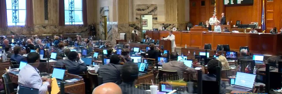 Louisiana lawmakers will likely cut higher education, health care in first draft of new budget