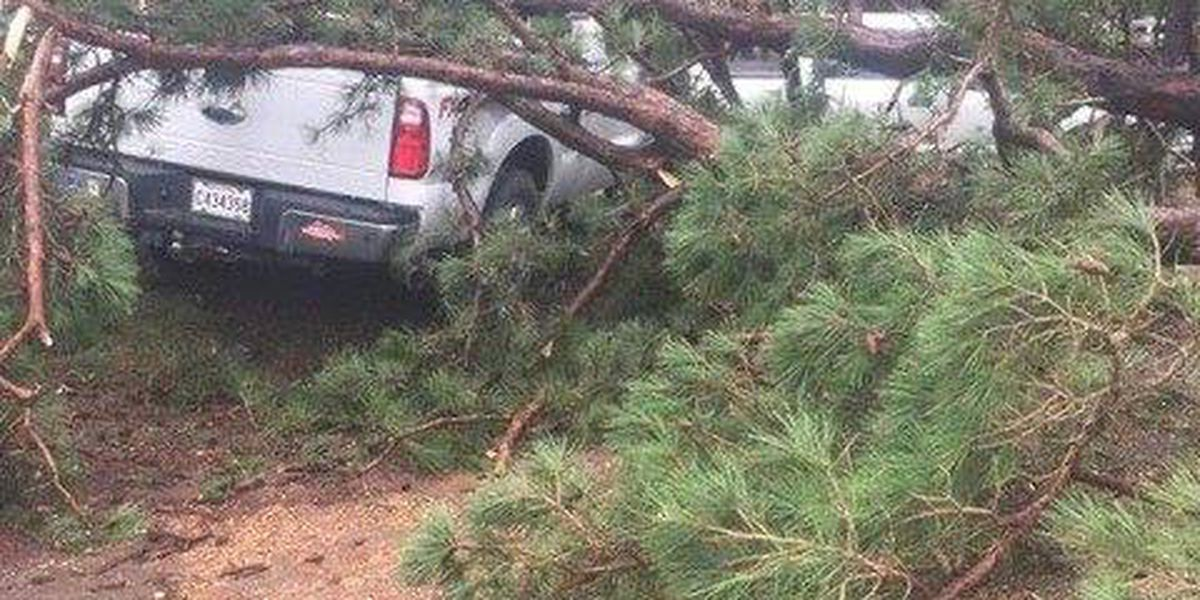 Storm damage reported at Toledo Bend