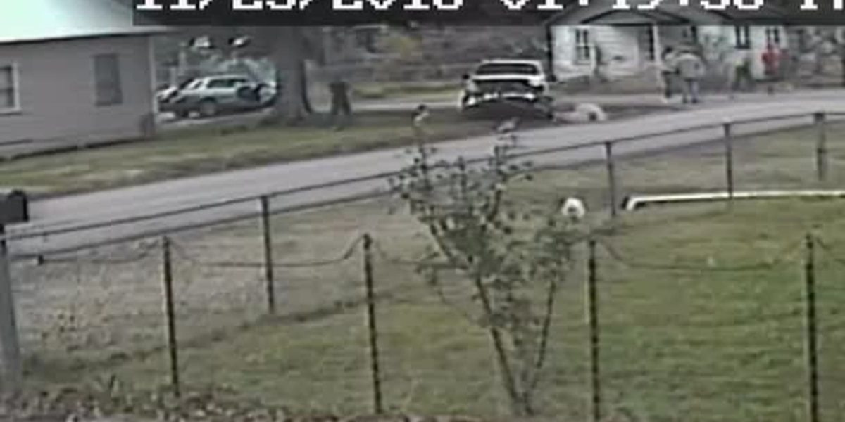 VIDEO: Jennings Police investigating allegedly 'intentional' two-vehicle accident
