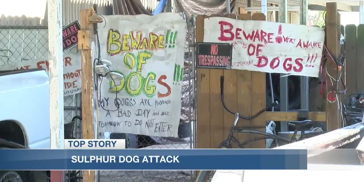 Man in critical condition after a Sulphur dog attack
