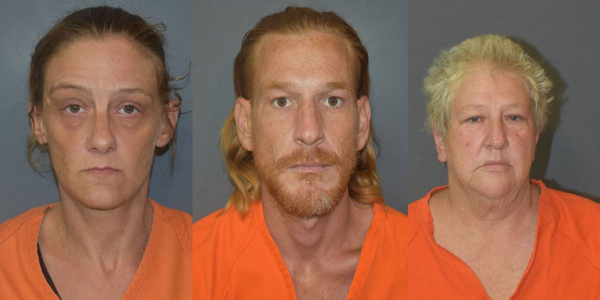 Three arrested after 2-month-old found malnourished in home