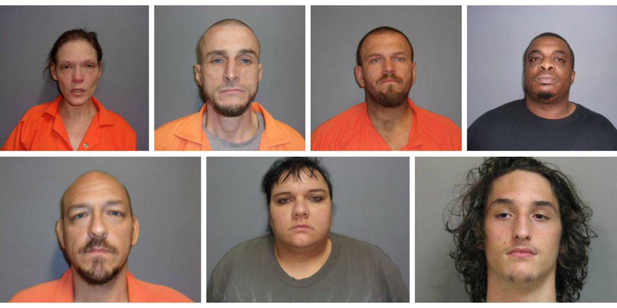 Seven arrested in connection with theft of 19 firearms from Vernon Parish pawn shop