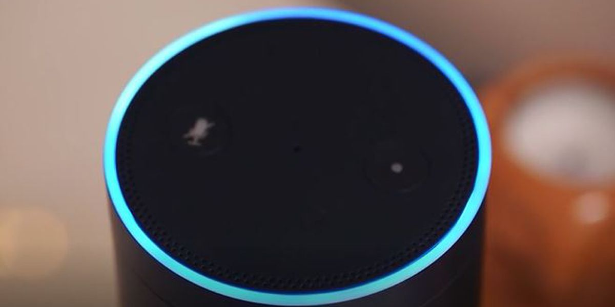 Making your voice assistant secure