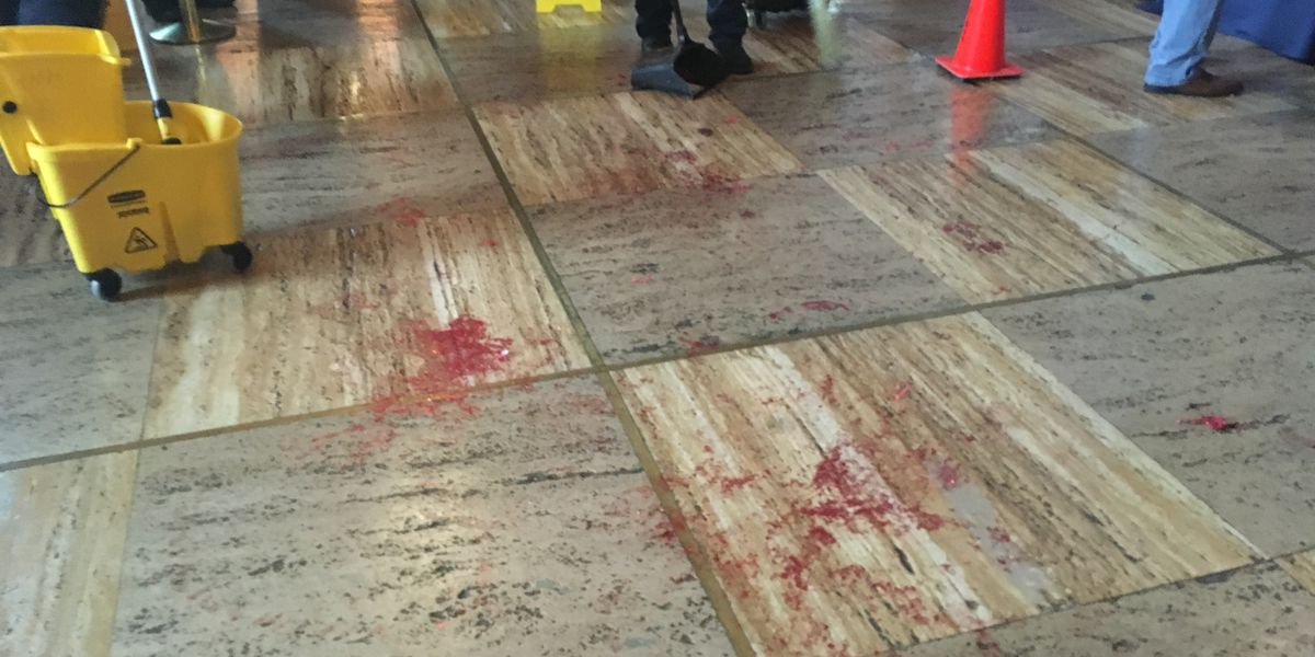 Protesters pour fake blood in Capital Building as La. lawmakers debate Fetal Heartbeat Bill